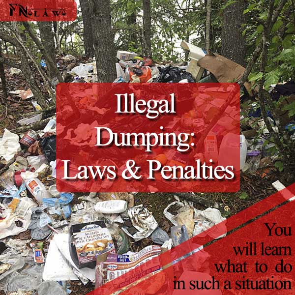 Illegal Dumping: Laws & Penalties